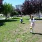 festivalul-copiilor-062